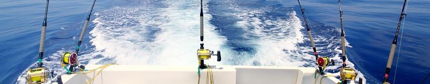 vis-uitrusting-voor-Zeevissen